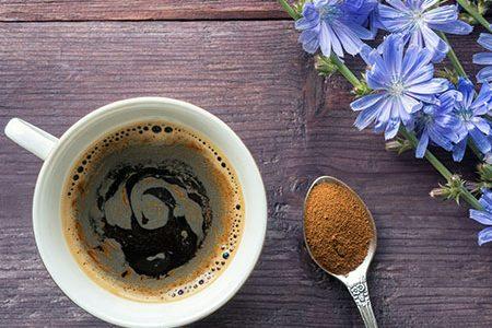 Caffè di cicoria: proprietà e benefici per l'organismo