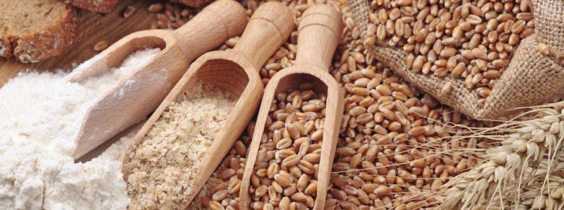 Come usare in cucina le farine alternative alla 00