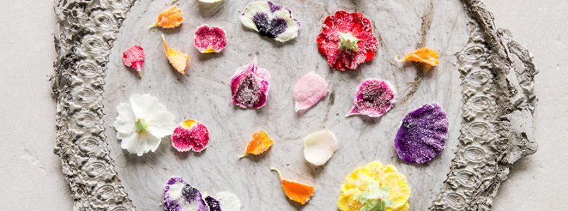 Primavera: i fiori nel piatto. Un tripudio di odori e colori